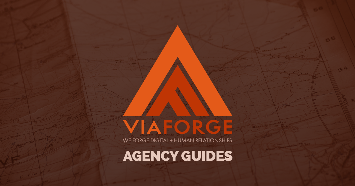 Plan | Guide to Digital Marketing Agencies | ViaForge